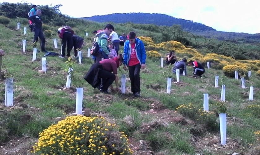 Los centros Isterria y Río Irati en el Día Verde